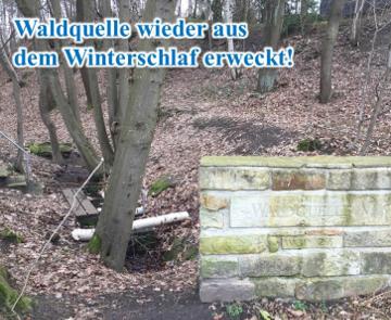 Arbeitseinsatz an der Waldquelle und am Dreihorst